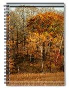 Warm Autumn Glow Spiral Notebook