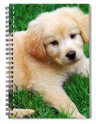 Warm Fuzzy Puppy Spiral Notebook