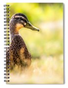 Warm Summer Morning And A Duck Spiral Notebook
