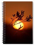 Warm Summer's Morn 2013 Spiral Notebook