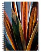 Warm Sunlight Spiral Notebook