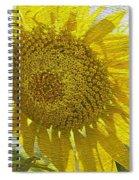 Warmth Upon My Back - Sunflower Spiral Notebook