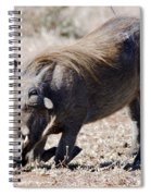 Warthog Digging Spiral Notebook