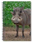 Warthog Stance Spiral Notebook
