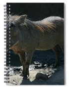 Warthog7119 Spiral Notebook