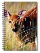 Wary Spiral Notebook