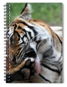 Washing My Paw Spiral Notebook