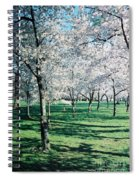 Washington Dc Cherry Blossoms Spiral Notebook