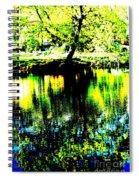 Washington Park Spiral Notebook
