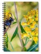 Wasp 2 Spiral Notebook