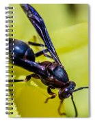 Wasp Spiral Notebook