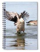 Watch Me Spiral Notebook