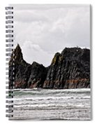 Watchful Eye Of Seal Rock Spiral Notebook