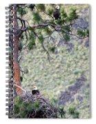 Watching The Nest Spiral Notebook