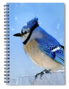 Watching The Snow Spiral Notebook