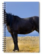 Watching You Wild Mustang Spiral Notebook