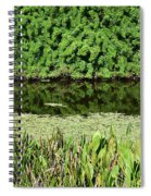 Water And Green Spiral Notebook