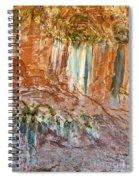 Water Artworks Spiral Notebook
