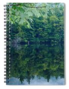 Water At Peace Spiral Notebook