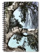Water Beyond The Tree Spiral Notebook