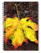 Water Colored Leaf - Autumn Spiral Notebook
