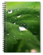 Water Diamonds Spiral Notebook