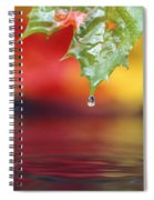 Water Dripping Spiral Notebook