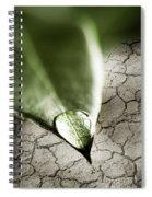 Water Drop On Green Leaf Spiral Notebook