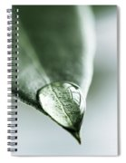 Water Drop On Leaf Spiral Notebook