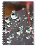 Water Drops On Cotinus Spiral Notebook