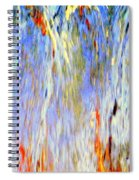 Water Fountain Abstract #30 Spiral Notebook