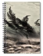 Water Fronds Spiral Notebook