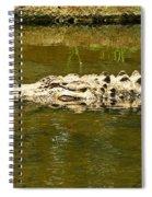 Water Gator Spiral Notebook