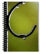 Water Ice Iron Spiral Notebook