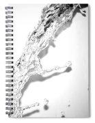 Water II Spiral Notebook