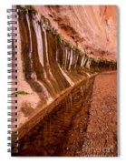 Water Is Life - Coyote Gulch - Utah Spiral Notebook