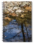 Water Leaves Stones And Branches Spiral Notebook