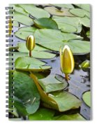 Water Lilies Aligned Spiral Notebook