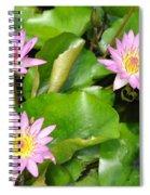 Water Lilies 3 Spiral Notebook