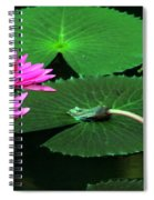Water Lillies In Pink Spiral Notebook