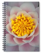 Water Lillies Macro Spiral Notebook