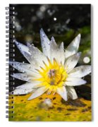 Water Lily 1 Spiral Notebook
