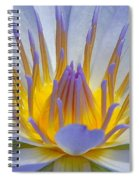 Water Lily 18 Spiral Notebook