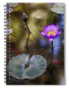 Water Lily 7 Spiral Notebook