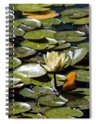 Water Lily And Bees Spiral Notebook