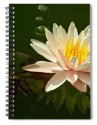 Water Lily And Pad Spiral Notebook
