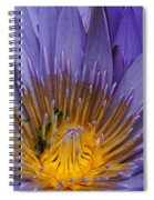 water lily from Madagascar Spiral Notebook