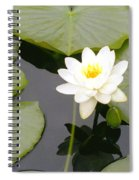 Water Lily I I Spiral Notebook