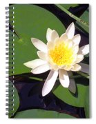 Water Lily I I I Spiral Notebook