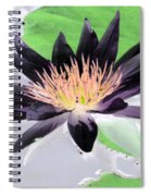 Water Lily - Purple Power - Photopower 1377 Spiral Notebook